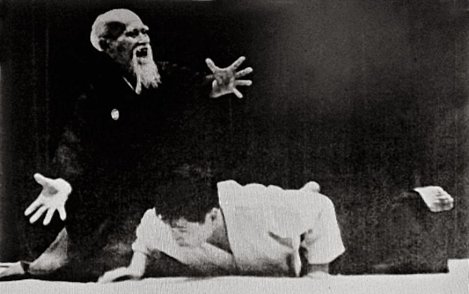 Aikido, or the illusion of controlling an adversary without hurting him